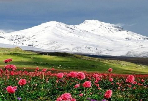 Бархатная неделя в Кабардино-Балкарии - уникальный проект!